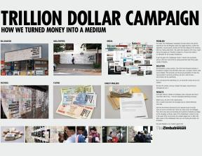 "The Zimbabwean - ""The Trillion Dollar Campaign""<br />photo credit: thisisnotadvertising.wordpress.com"