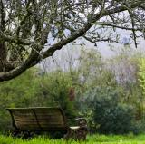 The bench in my garden<br />photo credit: thefhd.com