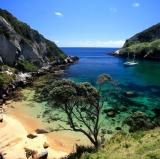 Great Barrier Island, New Zealand<br />photo credit: aucklandsphere.org