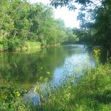 Cacapon River, Virginia<br />photo credit: Wikipedia