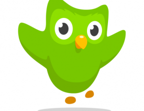 Duolingo<br />