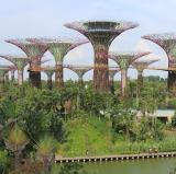 Gardens by the Bay, Singapore<br />photo credit: Wikipedia