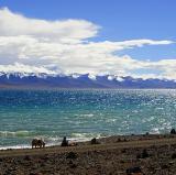 Namtso Lake, Tibet<br />photo credit: Wikipedia