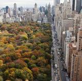 New York City<br />photo credit: cnn.com