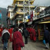 Dharamsala, Himachal Pradesh, India<br />photo credit: Wikitravel