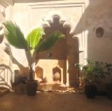 Subira House, Lamu, Kenya<br />Photo credit: subirahouse.com